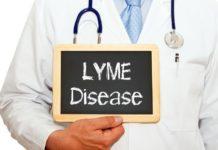 Maladie de Lyme: causes-symptômes-traitement